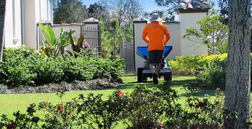 Top Dressing With Compost Is A More Sustainable And Affordable Alternative