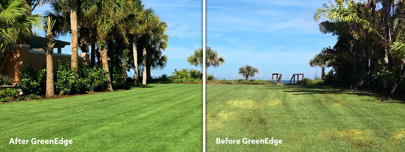 Before and After GreenEdge Sarasota Fl Lawn Care