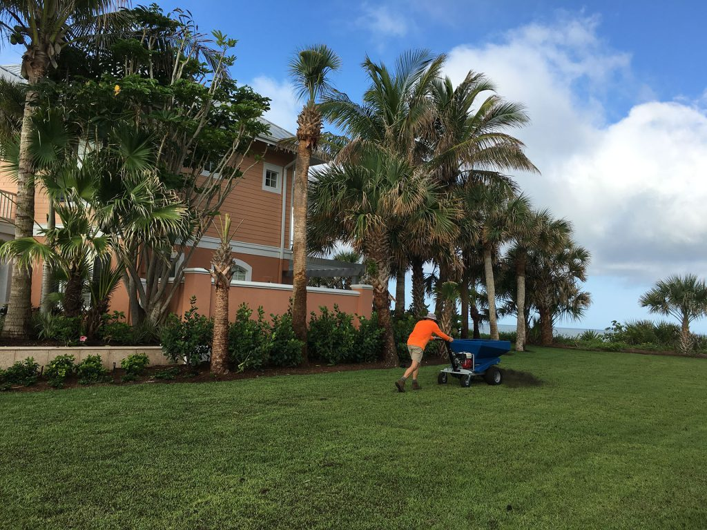 Compost Improves Sandy Florida Soils Structure And Nutrients